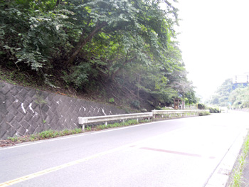 土山峠ちょっと手前に出た