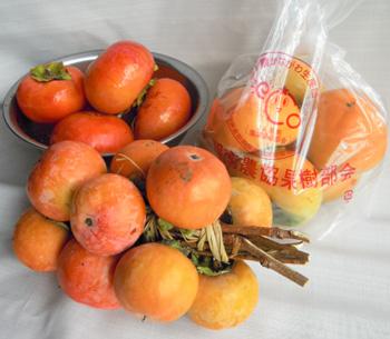 柿3種食べ比べ