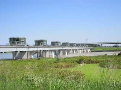 またまた相模川沿いを150920