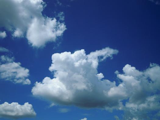 くっきりとした雲。