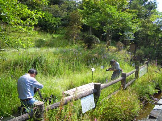湿地園のカメラマン。