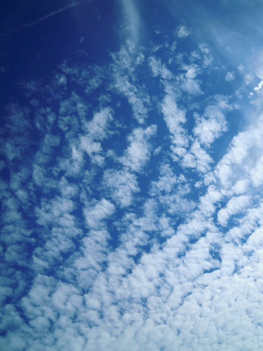 愛知県の秋の雲2。