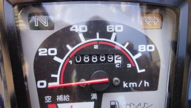 DSC02910.jpg