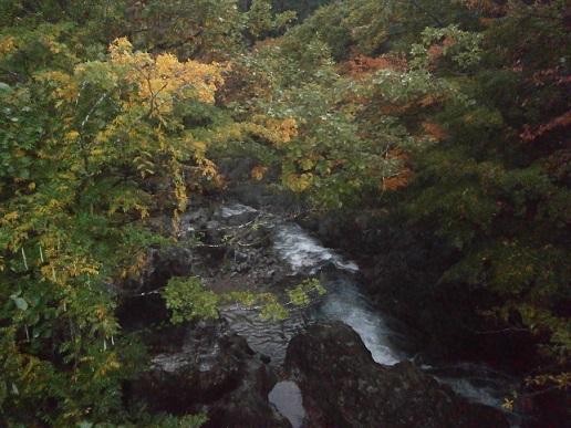 真瀬の秋1