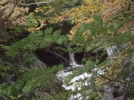 真瀬川の秋4