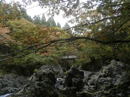 秋の真瀬川7