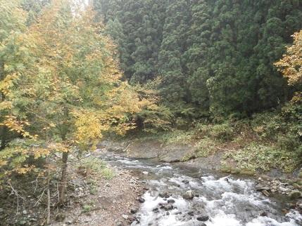 真瀬川の秋6