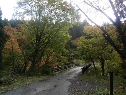 真瀬川の秋3