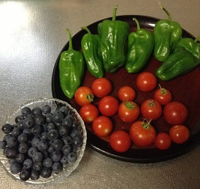 朝どり野菜たち