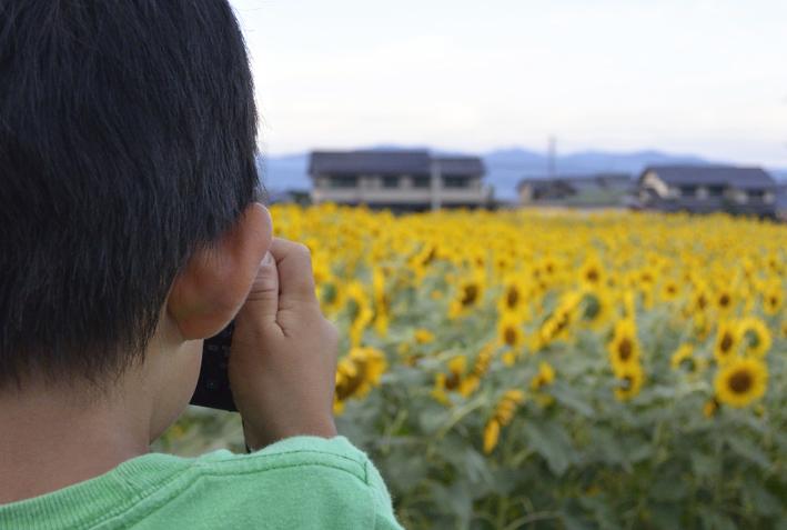 himawa5.jpg