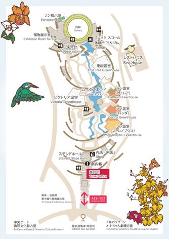 tdc_map.jpg