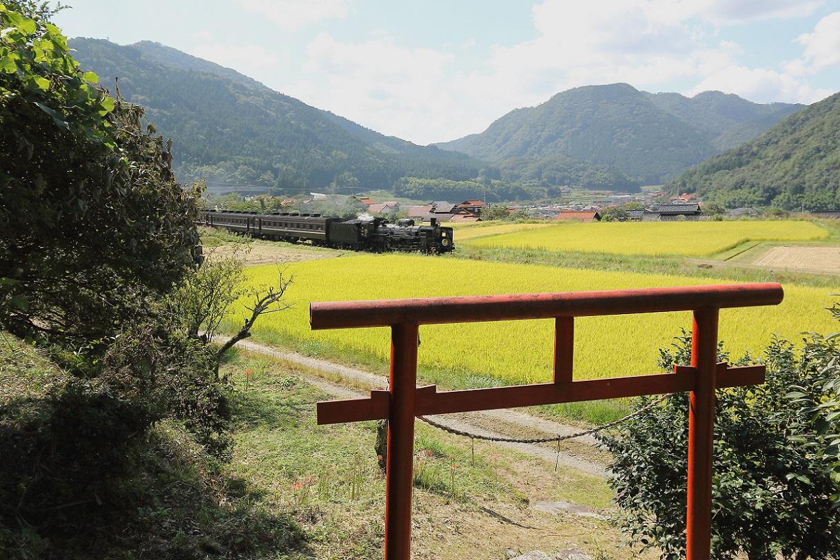 2015yamaguti47.jpg
