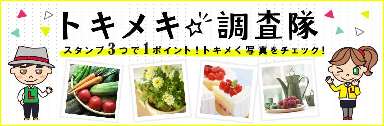 bnr_camp_762250_tokimeki.png