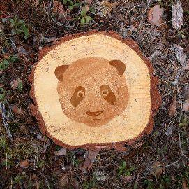 森林破壊03