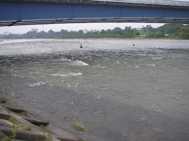 P9130437大渡橋下.jpg