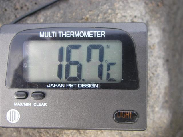 P9140440大渡橋1.jpg