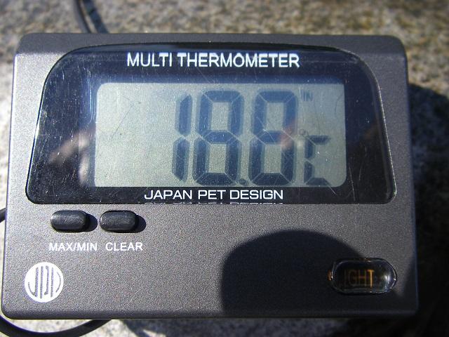 P9200452中大橋左岸.jpg