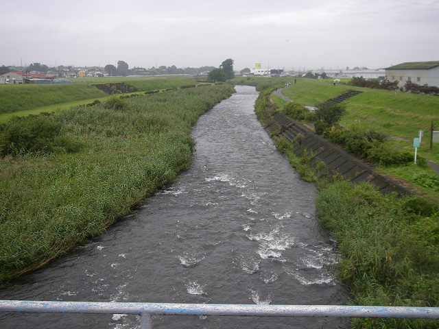 P9260470桃の木川大宝橋下流.jpg