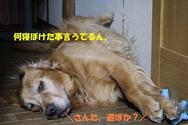 IMG_2193.jpg