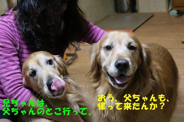 IMG_2593.jpg