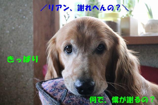 IMG_3578.jpg