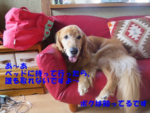 IMG_6610.jpg