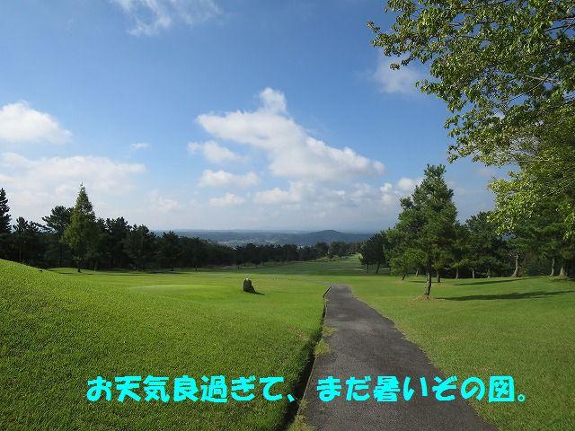 IMG_6799.jpg