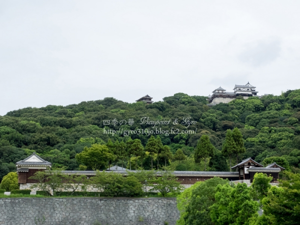 松山城 A