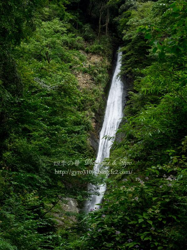 洒水の滝 B