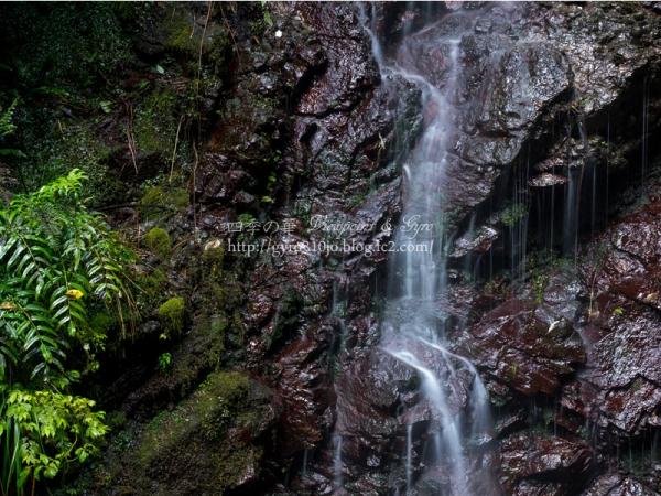 洒水の滝 F