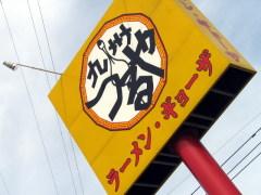 tsuru015.JPG
