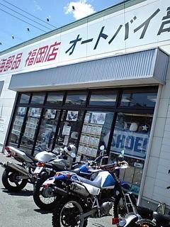 1sinho02.JPG