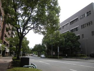 Fyosi017.JPG