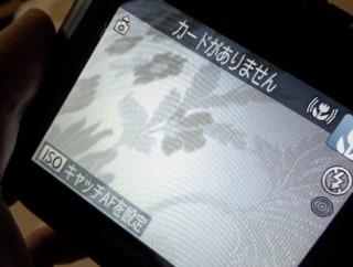 DSC_2356.jpg