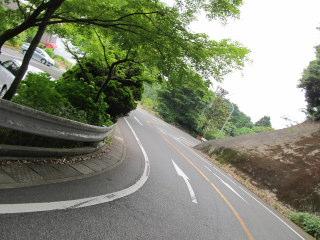 suiren2012_0602AD.JPG