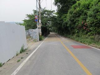 suiren2012_0602AF.JPG