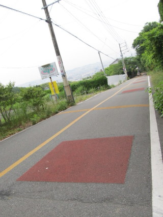 suiren2012_0602AE.JPG