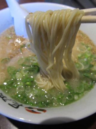 Shogun22012_0925AF.JPG