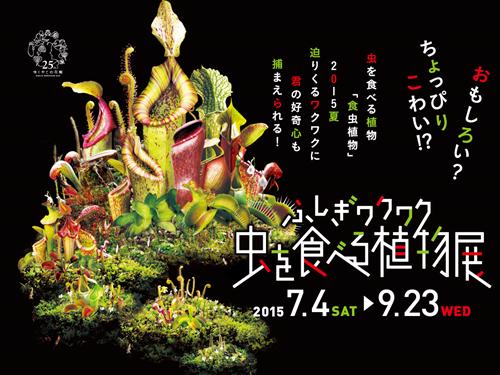 食虫植物_R