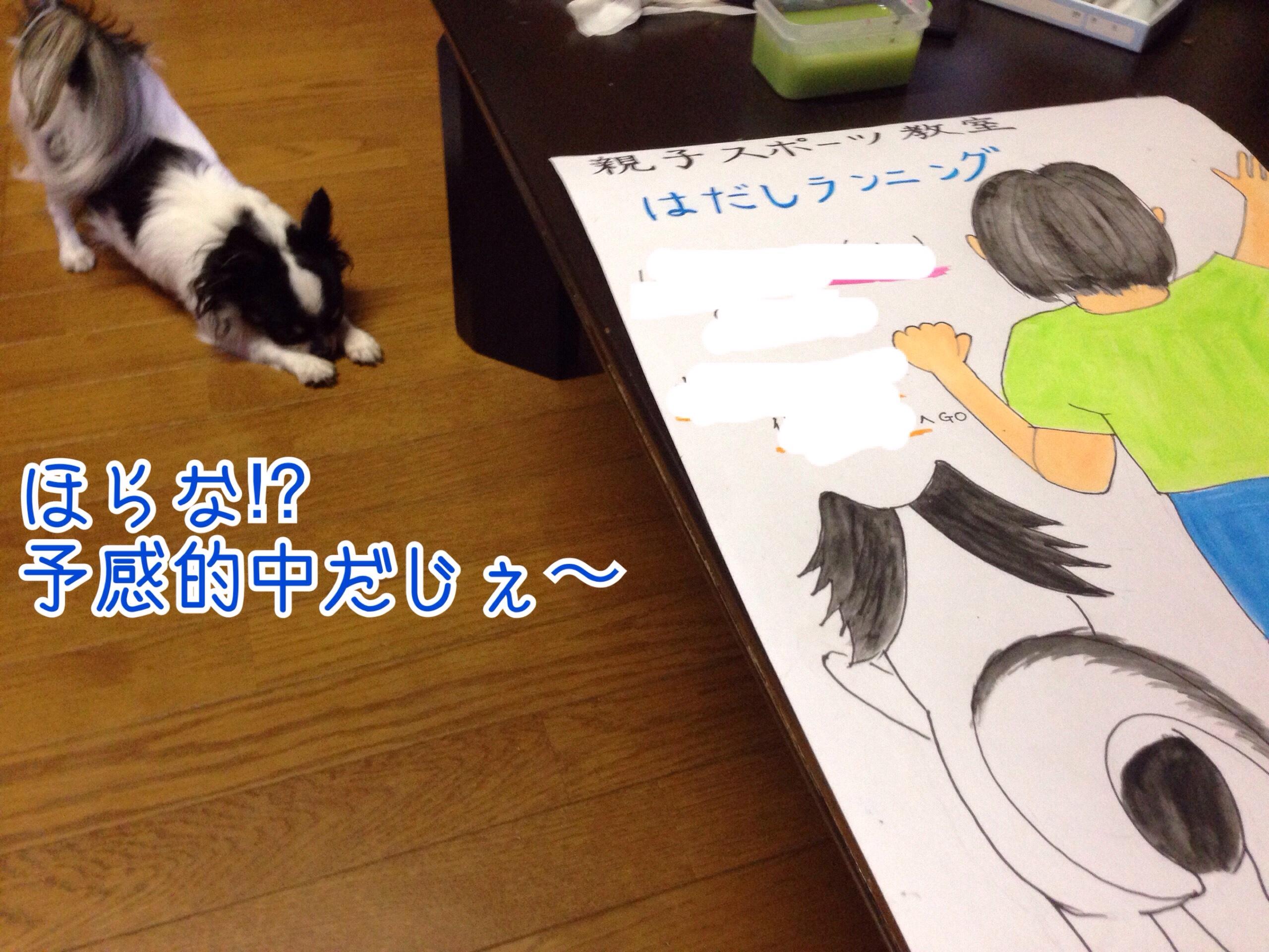 fc2blog_201509251150370af.jpg