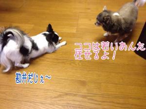 fc2blog_20150925115113a6d.jpg