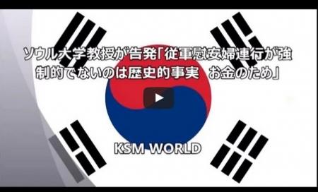 【動画】ソウル大学教授告発「従軍慰安婦連行は強制的でない お金のため」 [嫌韓ちゃんねる ~日本の未来のために~ 記事No4911