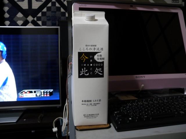 DSCN9860 (Custom)