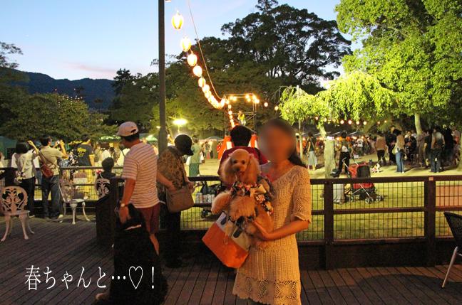 IMG_10932012夏