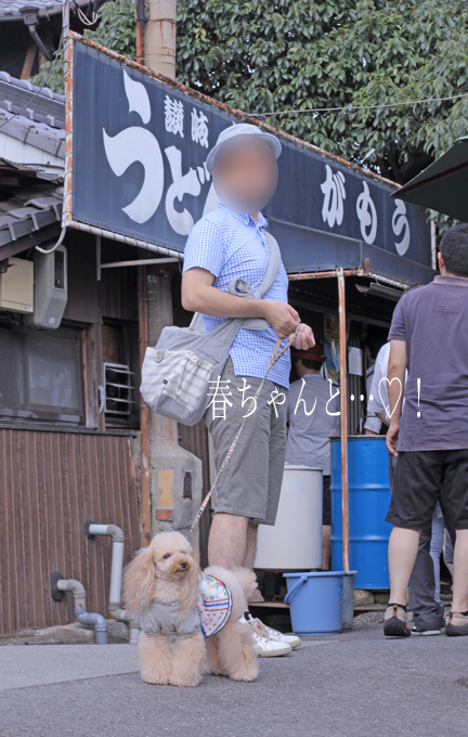 IMG_8886香川うどん