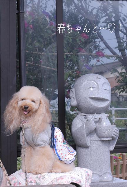 IMG_8909香川うどん