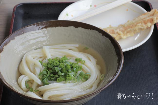 IMG_8950香川うどん