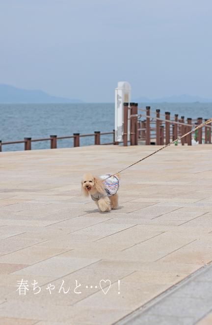 IMG_9014香川