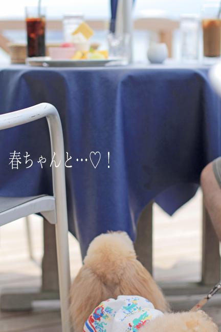 IMG_9049香川
