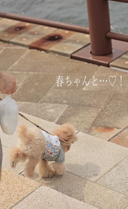 IMG_9083香川